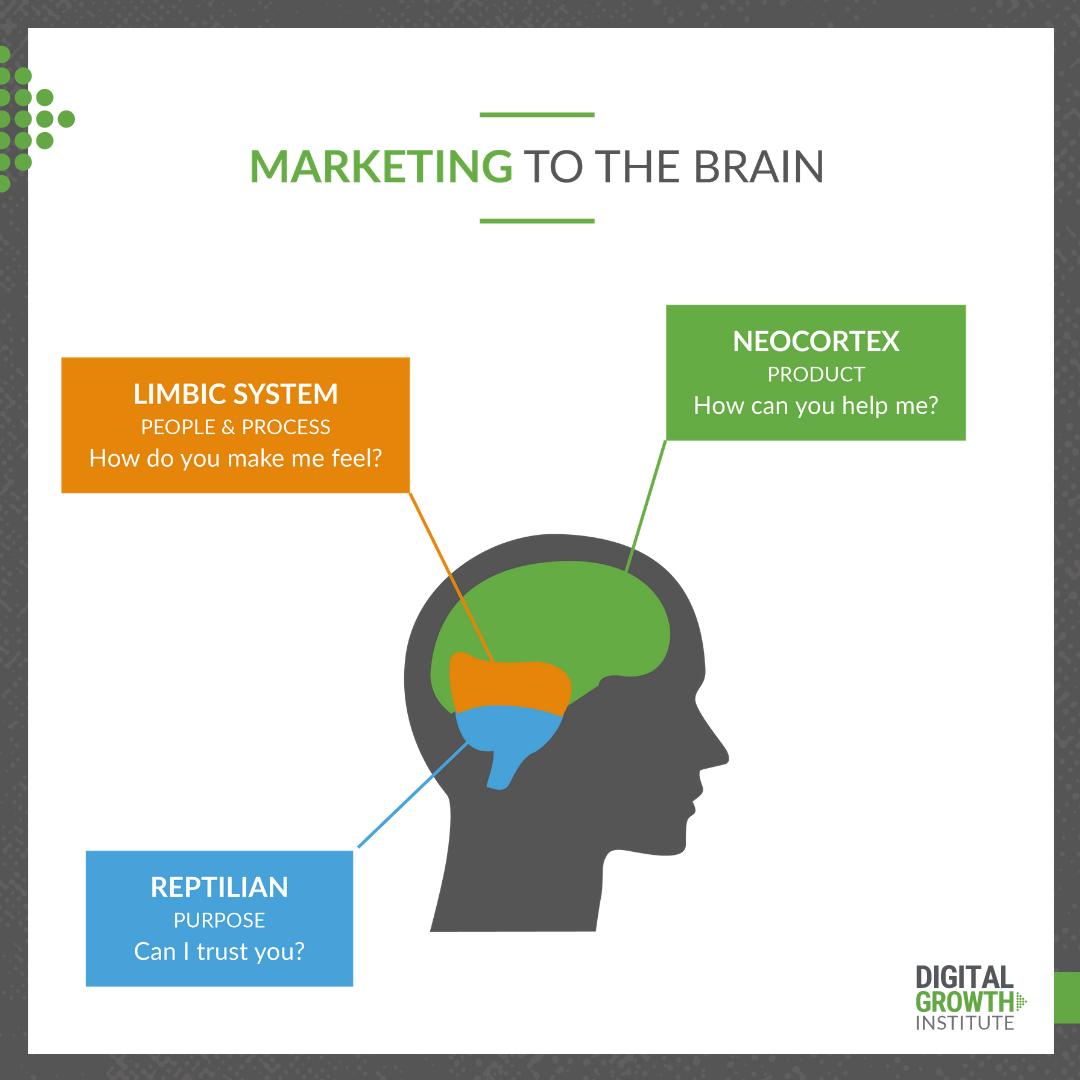 Marketing to the Brain