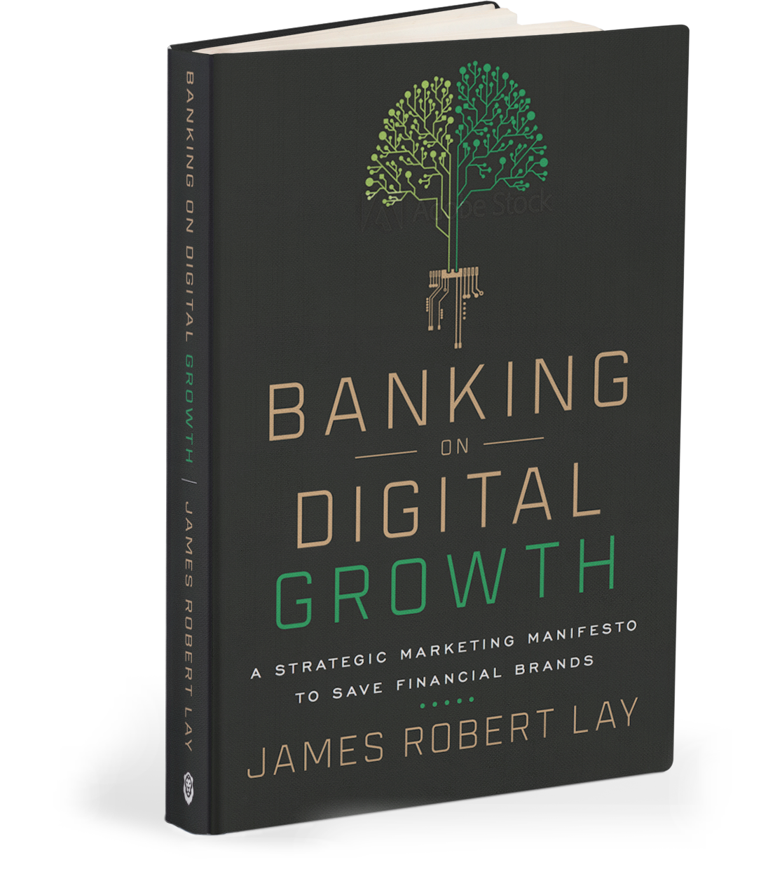 Banking on Digital Growth Book Cover